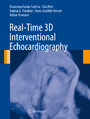 Real-Time 3D Interventional Echocardiography