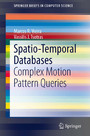 Spatio-Temporal Databases - Complex Motion Pattern Queries