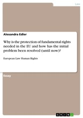 Why is the protection of fundamental rights needed in the EU and how has the initial problem been resolved (until now)? - European Law Human Rights